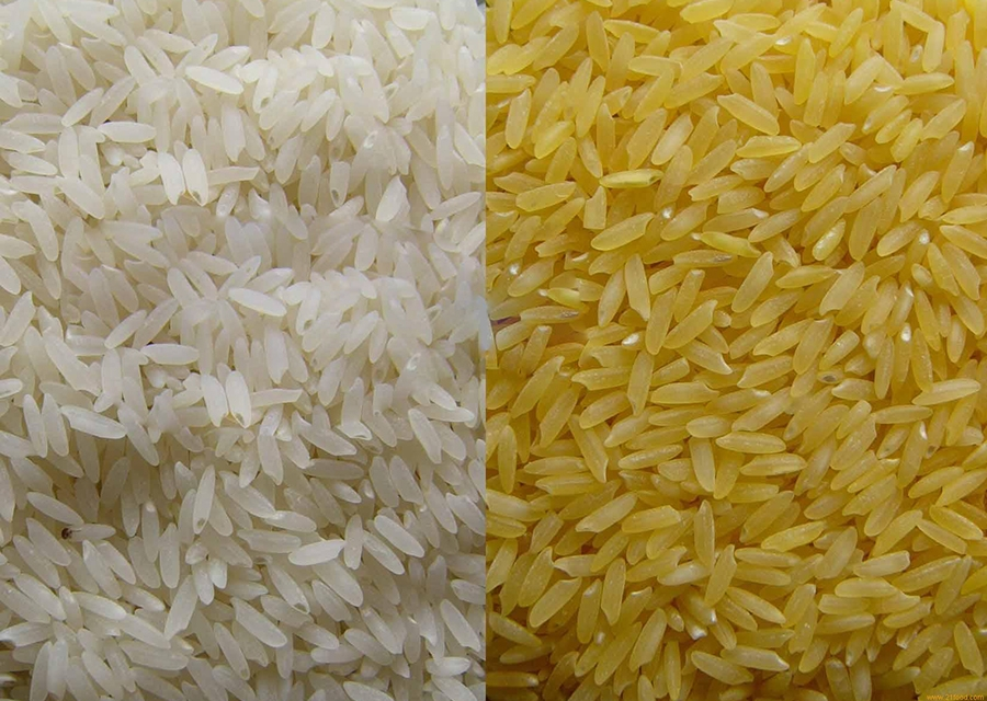 Viet Nam exports quality rice to Haiti