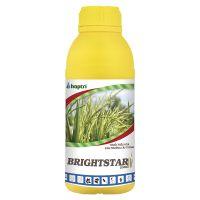 BRIGHTSTAR 25SC