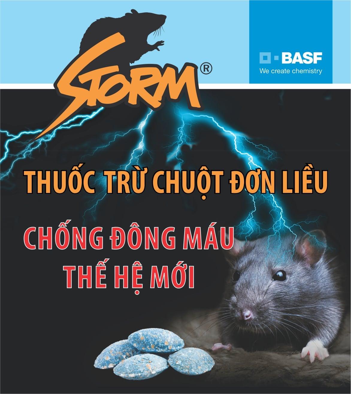 Storm ads